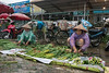 Rain or shine, the Quang Ba flower market goes on, Hanoi, Vietnam