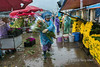 Rainy day with an armload of flowers, Quang Ba flower market, Hanoi, Vietnam