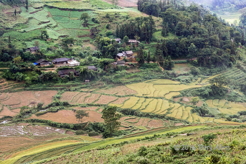 Rural village and agriculture in the hills of Hoi Lung Sun, north Vietnam