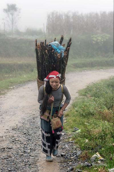 Heavy load of wood