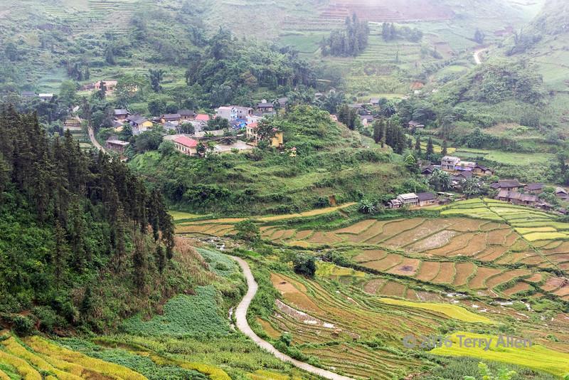 Rural village with rice terraces, Hoi Lung Sun, north Vietnam