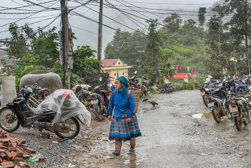 Flower Hmong woman heading to the Coc Ly market in the pouring rain, near Sa Pa, Vietnam
