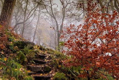 Autumn in the UK, Pistyl Rhaeadr waterfall, Powys, Wales