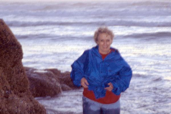 Coast of Oregon and Hecta Head Lighthouse