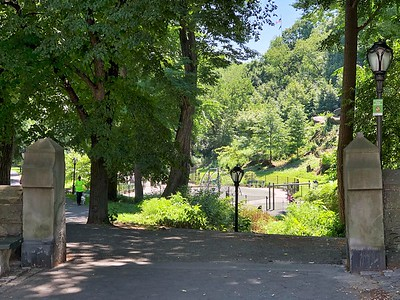 North Woods in Central Park