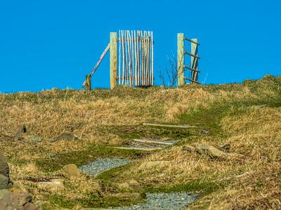 Newfoundland - Neufundland