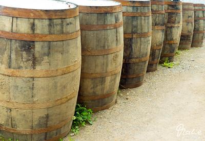 barrells outside the  Glenora Whisky Distillery