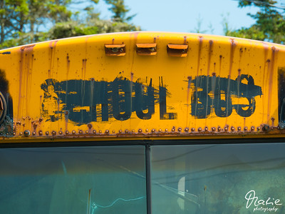 the old school bus