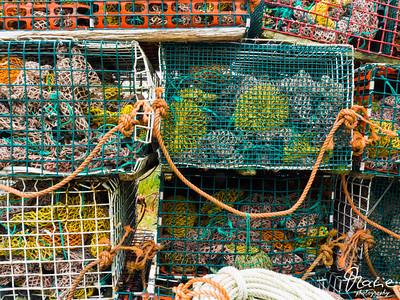 lobster trap in tiverton