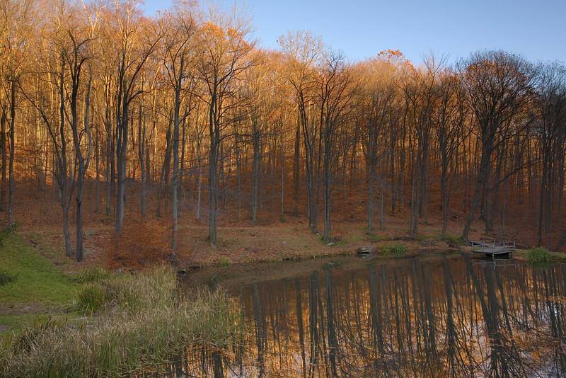 Seven Springs Pond