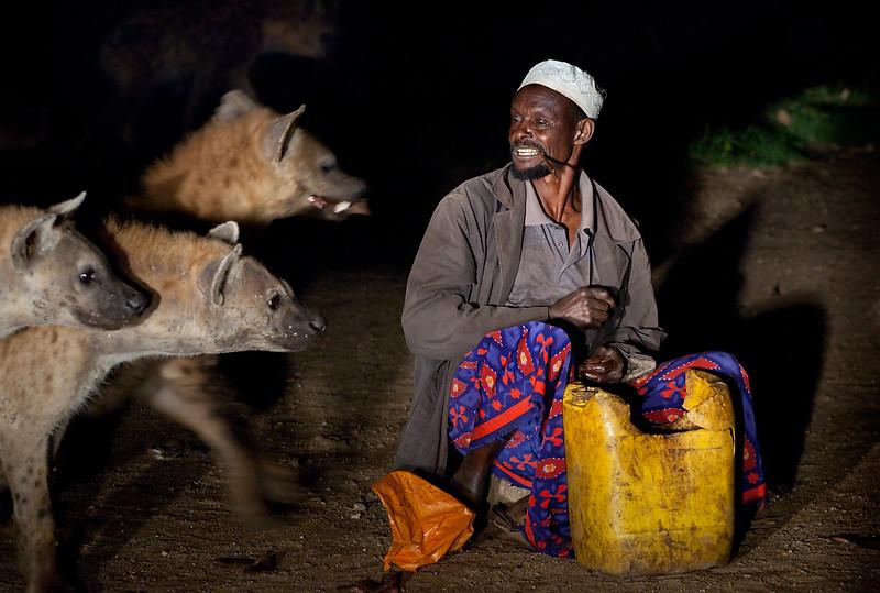 Feeding wild hyenas - Harar