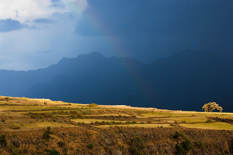 Going home before the rain is coming. Near Na'akuto La'ab church - Lalibela