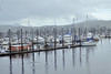 The small boat harbor in Ketchikan
