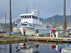 The 60' M/V Misty Fjord is an expedition class vessel,