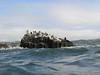 Seal Rock<br /> Crescent Bay, Laguna Beach, California