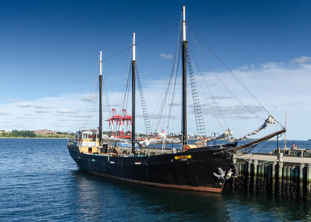 The tall ship Silva.