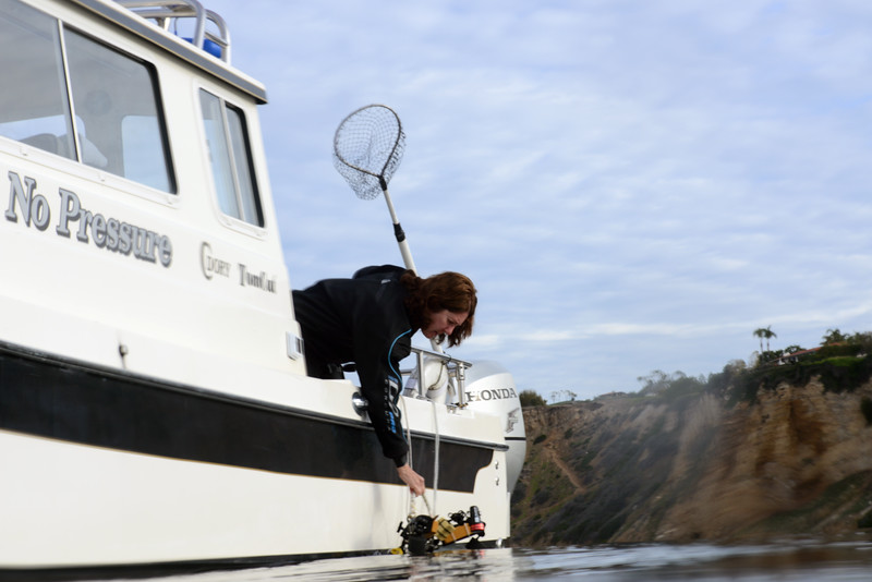Merry, clipping off her rig<br /> Palos Verdes, California