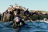 Jan L.<br /> Seal Rock, Laguna Beach