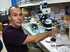 Gordon Hendler, Curator of Echinoderms, at his microscope.<br /> Natural History Museum of Los Angeles, California, USA