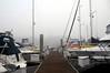 Foggy morning<br /> Marina del Rey