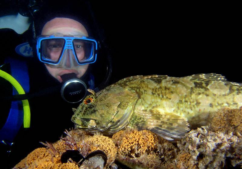 Aaron S. with cabezon<br /> Deadman's Reef, Laguna Beach