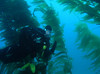 Gerry<br /> San Clemente Island