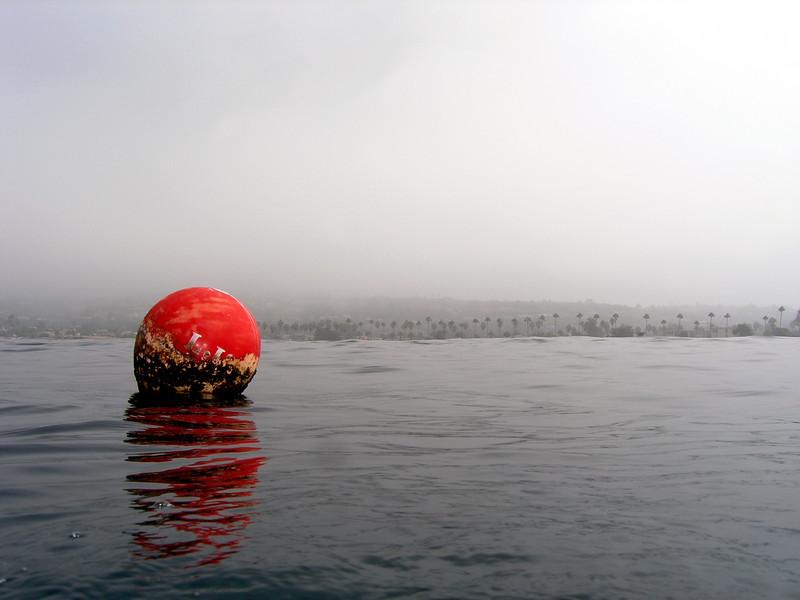 Dive Site: Foggy morning, at La Jolla Shores, California USA