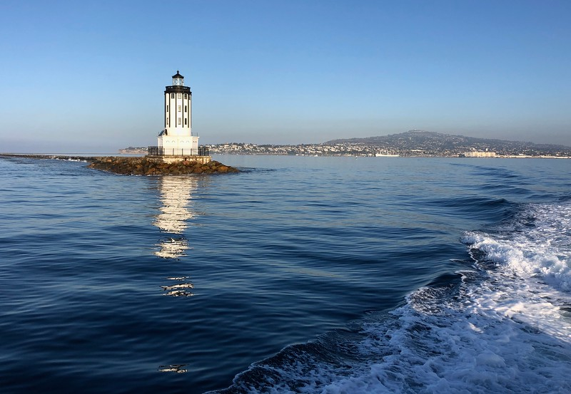 Angel's Gate Lighthouse<br /> BioBlitz<br /> August 27, 2019