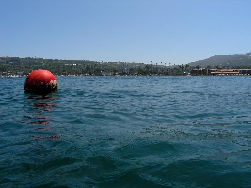 Dive Site: Sunny afternoon, La Jolla Shores, California USA