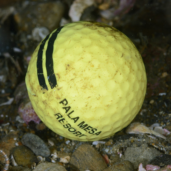 160515_GolfBall