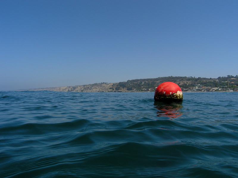 Dive Site: View toward Scripps Institute<br /> La Jolla Shores, California USA