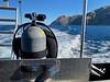 Giant Stride<br /> Catalina Island<br /> November 29, 2020