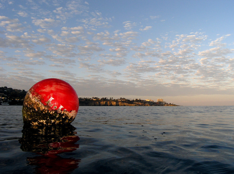Dive Site: Dawn at La Jolla Shores, California USA