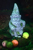 Golf Ball Gnome<br /> Golf Ball Reef, Redondo Beach, California