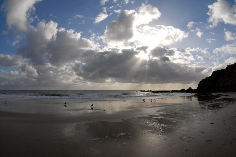 Dive Site: Crescent Beach, Laguna Beach, California