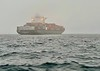 A thick fog hid huge shipping vessels, en route to Catalina.<br /> Catalina Channel, California<br /> January 9, 2021
