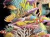 """This is the most exquisite pop-out card, called """"Reef Life"""" I've ever received.  Thanks Eva! The fine detail is achieved by laser cutting. The yellow and grey critters, among the sea cucumbers, could be nudibranch cerata!!<br /> December 25, 2020"""