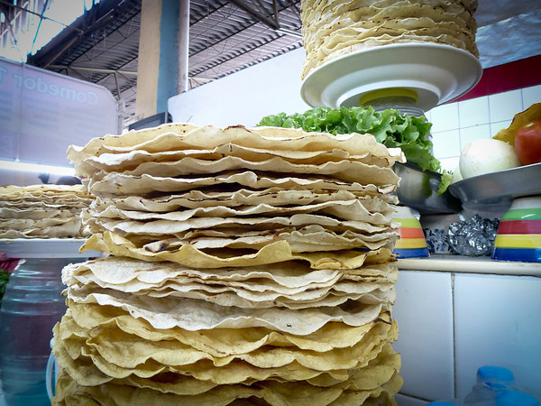 fried corn tortillas