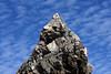 Osprey bird nest atop el Archo, Isla la Ventana<br /> Bahia de Los Angeles, Baja, Mexico
