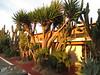 Hotel Los Cirios<br /> San Quintin