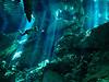 Swimmer<br /> Dos Ojos Cenote