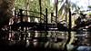 Dive Platform<br /> Dos Ojos Cenote