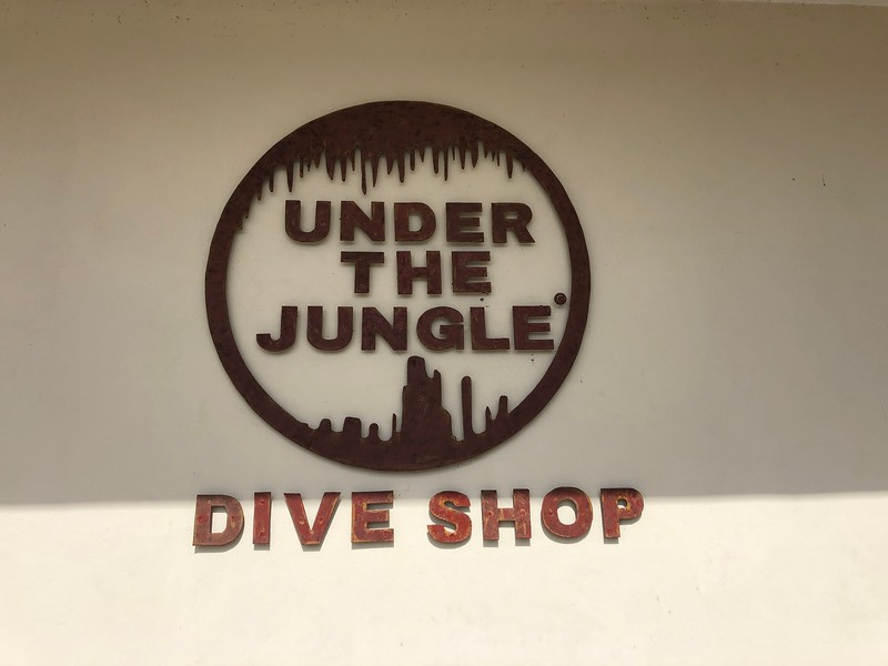 "Under the Jungle Dive Shop<br /> <a href=""http://www.underthejungle.com/en/home/"">http://www.underthejungle.com/en/home/</a>"