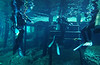 End of dive<br /> Dos Ojos Cenote