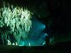 Dream Gate Cenote