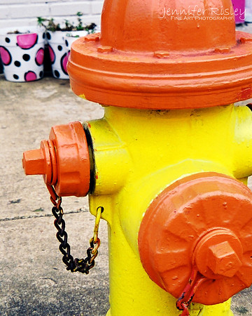 Fire Hydrant: Oxford, MS