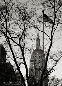 Empire State Building & Flag through Branches