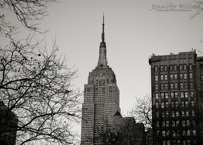 Empire State Building from Madison Square Park