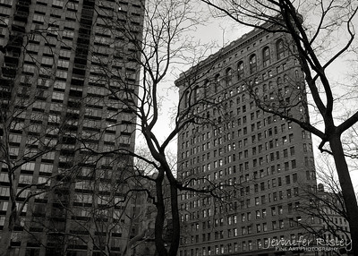 Flat Iron Building from Madison Square Park