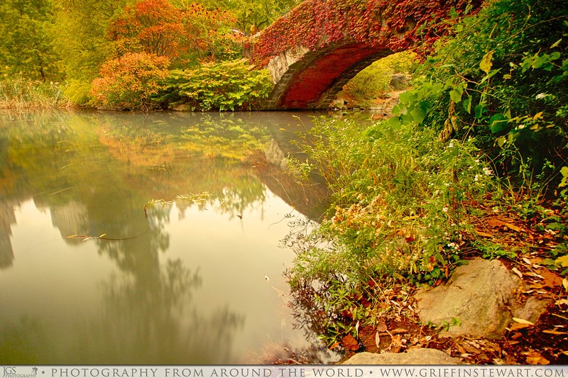 The Red Bridge - Central Park In The Fall